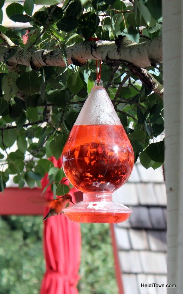 Humming bird at a feeder at Keystone Resort, July 2015. HeidiTown.com