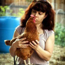 Hungry Chicken Homestead Bonnie & chickens Heather Sams Fine Portraits