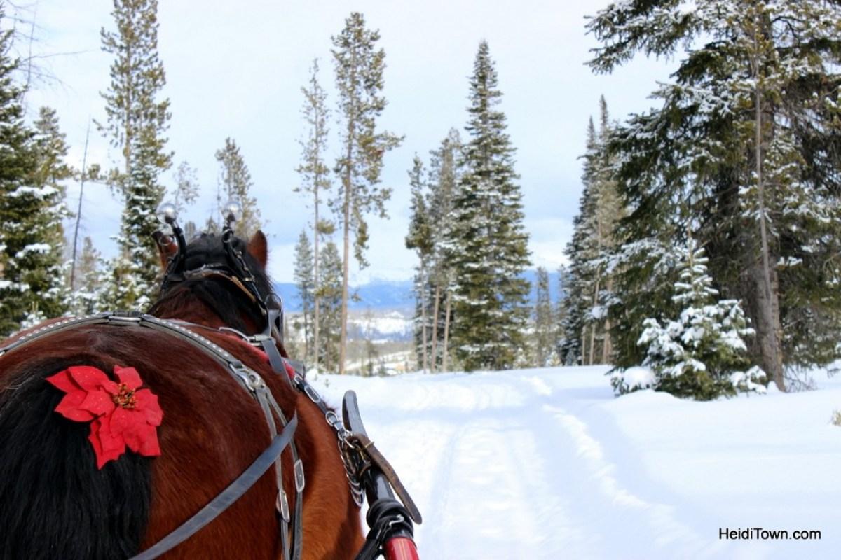 A sleigh ride at Snow Mountain Ranch. Rufio - HeidiTown.com
