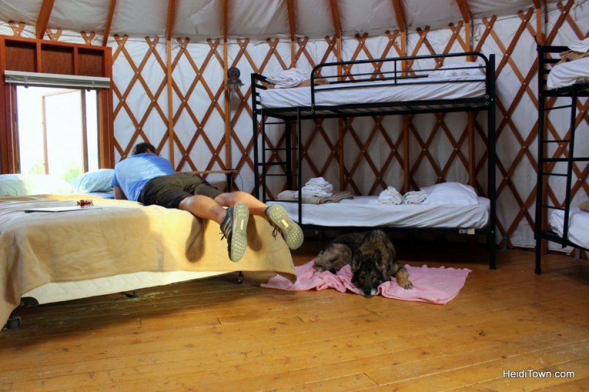 A stay at Yurt Village at Snow Mountain Ranch. Inside the yurt view with dog. HeidiTown.com