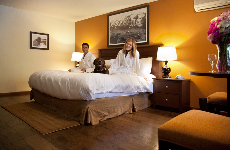 Dog-Friendly Hotels in Your Favorite Colorado Destinations Molly Gibson Lodge