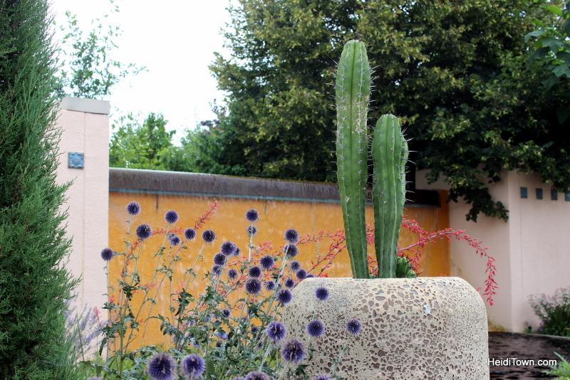 Shooting All the Flowers at Denver Botanic Gardens (2)