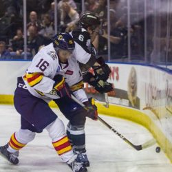 A Night Out With the Colorado Eagles, game shot, photo by Ashley Potts