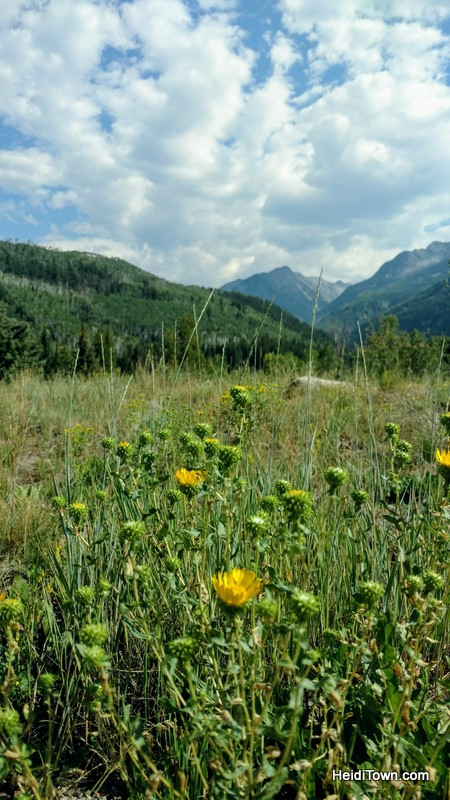 Off the Clock in the North Fork Valley of Colorado on HeidiTown (8)