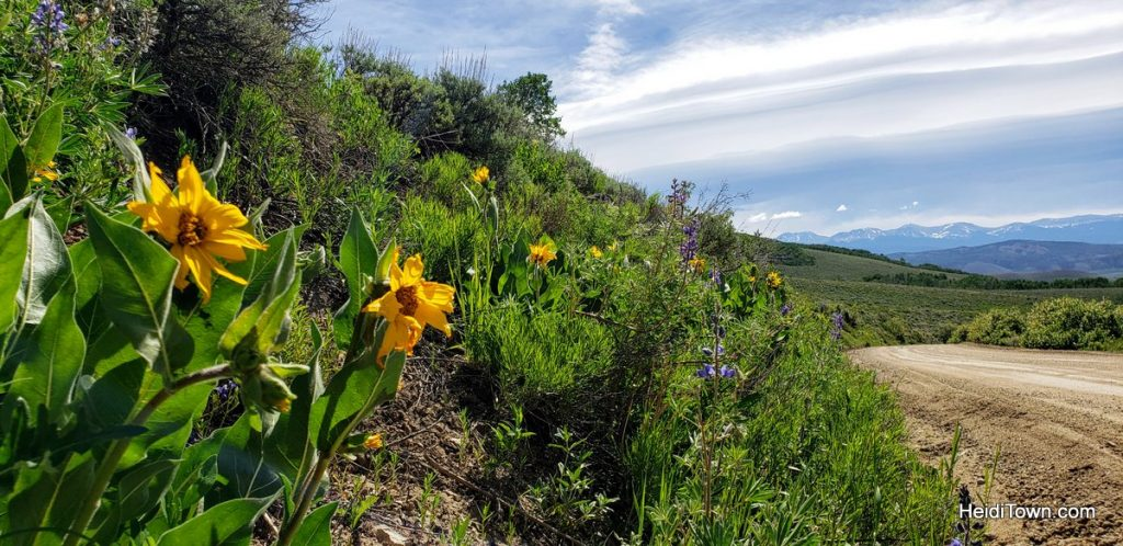 Day Trip from Snow Mountain Ranch in Grand County, Colorado. HeidiTown (9)