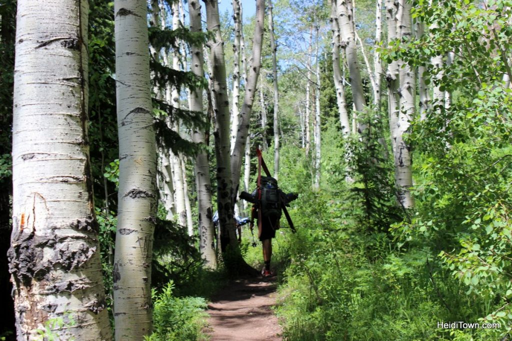 Vail, Colorado is Open for Business Take a Postcard Pretty Hike. HeidiTown (8)