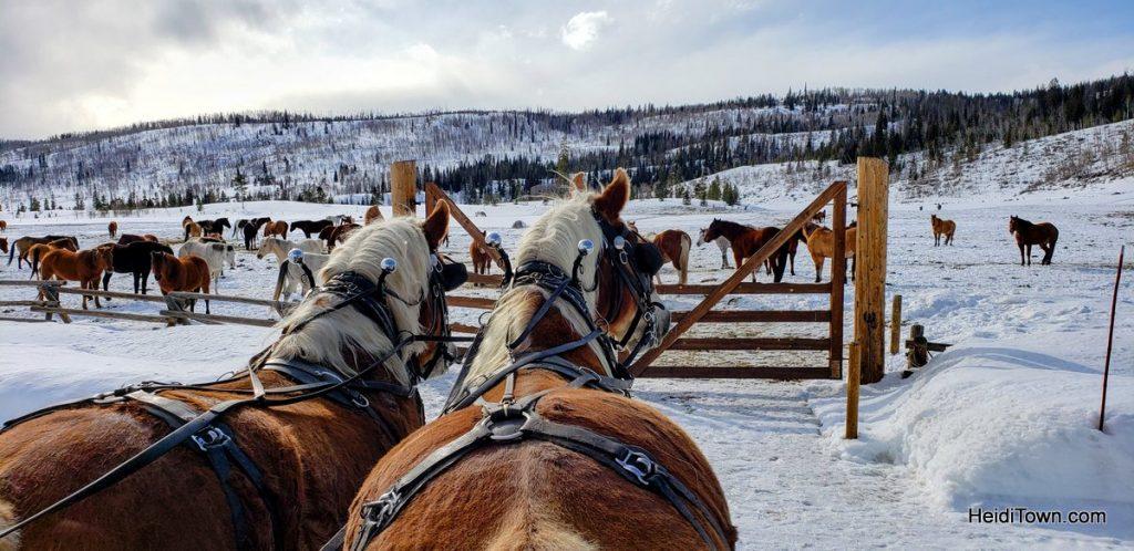 Hot Tubs & Horses at Vista Verde Ranch in Colorado. HeidiTown (12)