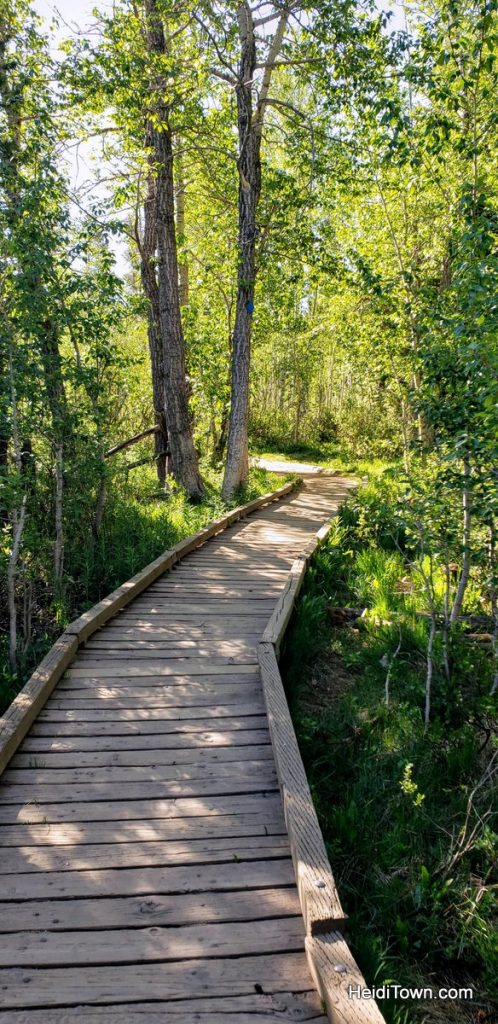 Two Short Scenic Hikes in Summit County, Colorado. HeidiTown (6)