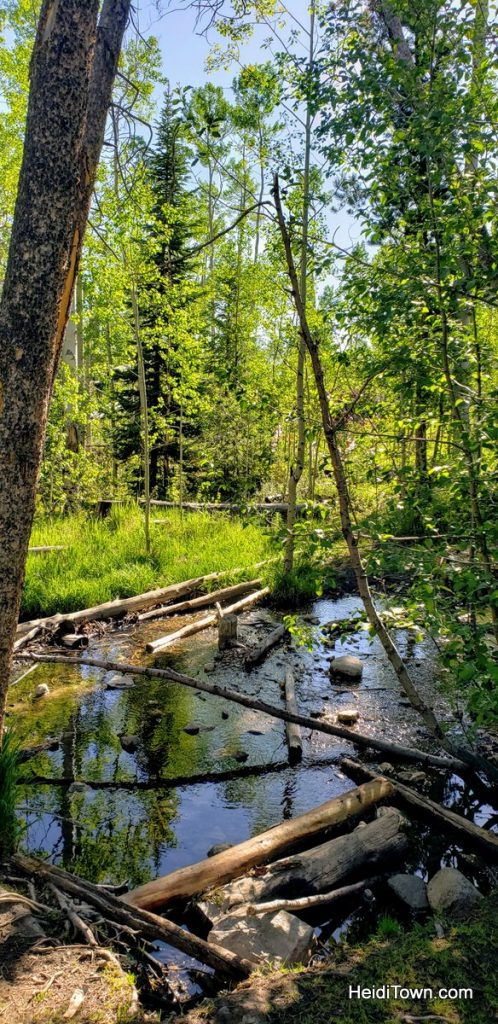 Two Short Scenic Hikes in Summit County, Colorado. HeidiTown (8)