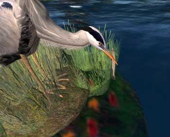 Heron at Spellbound Woods