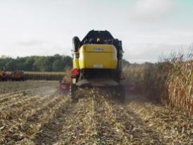 het restproduct , de maisstengels, blijven op het land achter.