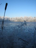 gat-van-winters-leenderstrijp