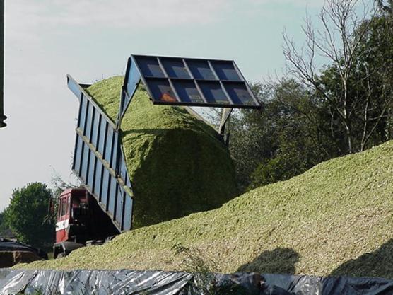 maiskuil vrachtwagen leende 1