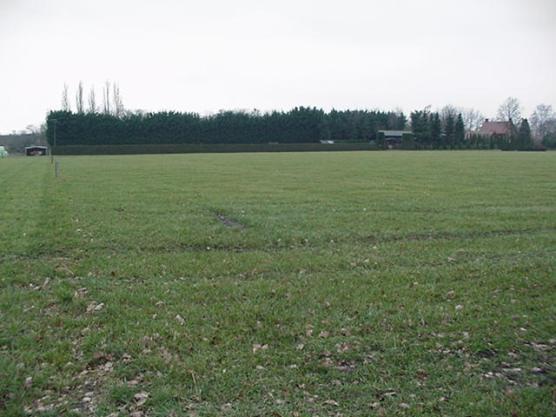 Het grasland, klaar om bemest te worden.