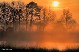 """""""Beeld van de stilte""""... mist 2"""