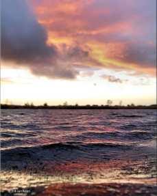 """""""Brandend water"""". Foto 3: wij hebben hier geen zee, maar dat wil nog niet zeggen dat we geen golven hebben :) . Ven in gebied van #Staatsbosbeheer Zuidoost-Brabant"""