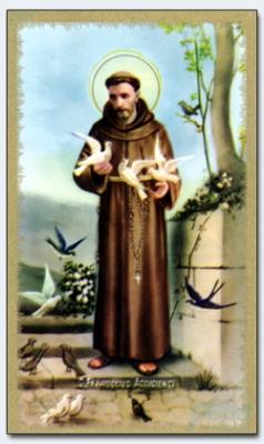 04208  Franz von Assisi  wwwheiligenbildde