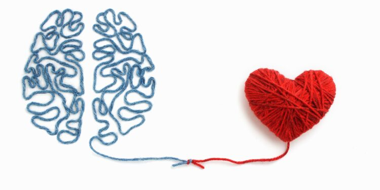 The brain and heart of wool tied in a knot.