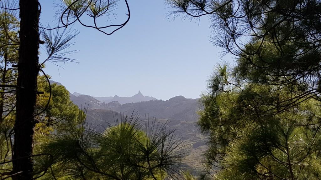 Gran Canaria - Tag 3 - Valle de Agaete