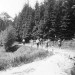 Wanderung im Fischzuchtgrund 1931