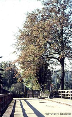 Herbst an der Oberförsterbrücke