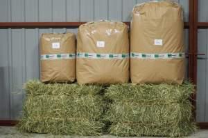 Osta heinää kaneille ja jyrsijöille kolmessa eri pakkauskoossa. Nopeat toimitukset joka arkipäivä.