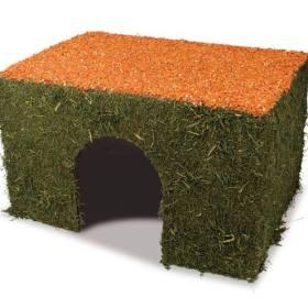 talo porkkanakatolla L