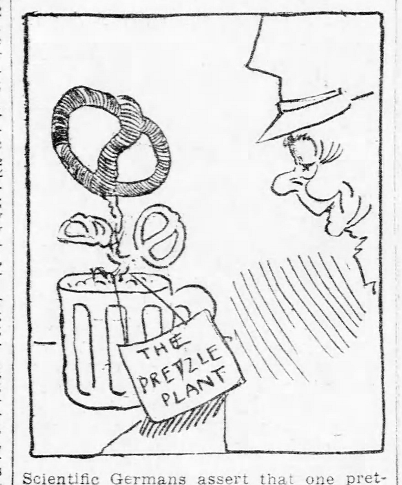 "Cartoon showing a ""pretzle plant"" growing from a mug of beer, 1912. Pittsburgh Daily Post, July 23, 1912."