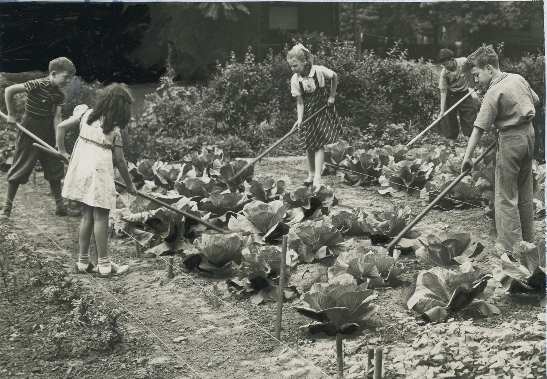 Children from Holmes Elementary School work on a school garden, (detail of full photograph) c. 1940.