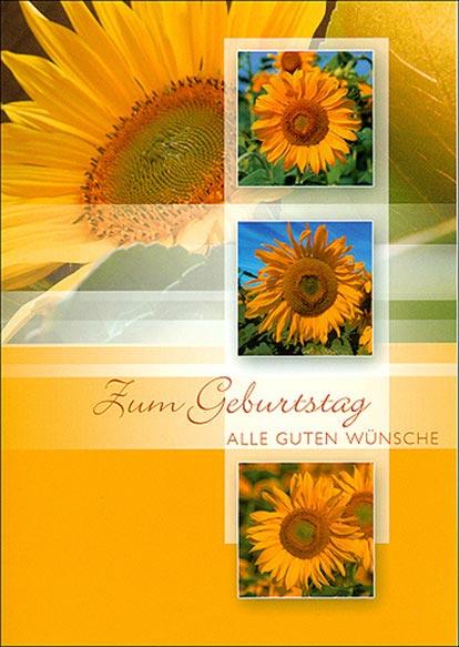 Karte Geburtstag Sonnenblumen 511665