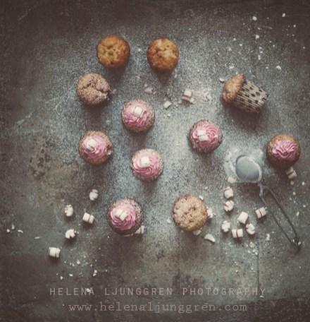 polkamuffins