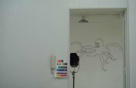 atelier octopus.jpg