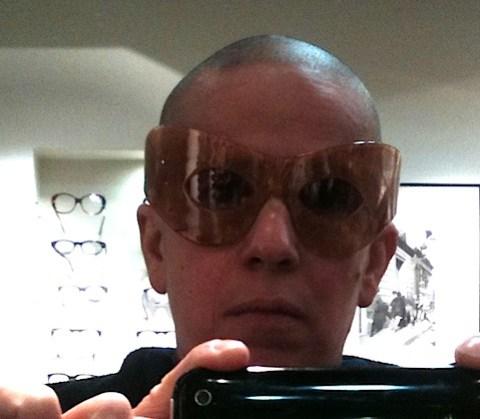 LNdetail lunettes2011.jpg