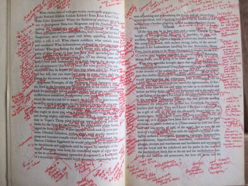 James Joyce's Finnegans Wake