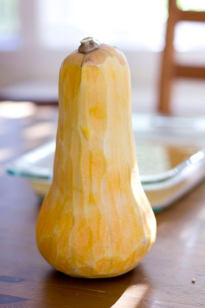 Peeled Elvin (Elvish?) Butternut Squash.