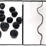©Ken Shung 'APPLES & WHISTERIA DIPTYCH'. Color-black apples against a stark white background. Abstract