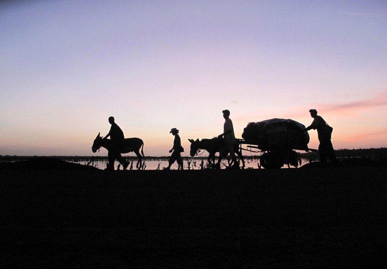 Dawn sky, 930km walk around The Gambia, West Africa