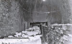 Mushrooms Cultivation - 1st Helensburgh Tunnel