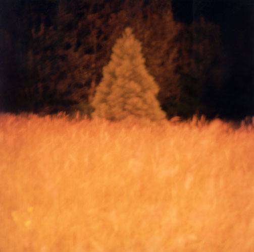 Tale (Reading) 2003 - Pigment Print, Variable Size