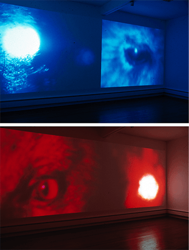 Light Seeking Transparency : Video Installation ART LAB, London with Ffotogallery Wales 2002