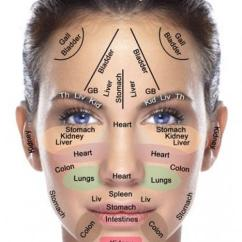 Chin Muscles Diagram States Of Matter Venn Indian Head Massage ( Champissage) | Helensgoodhairday.com