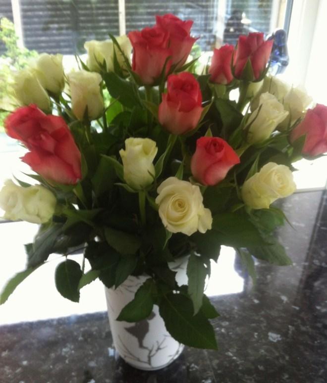 Vakre roser