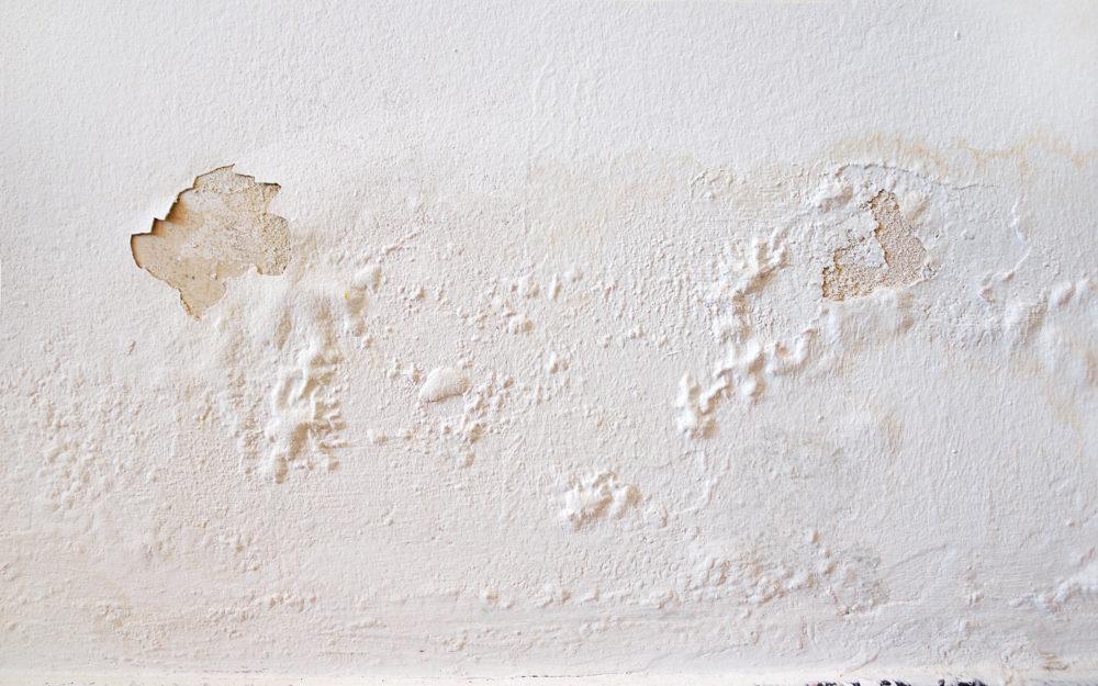 wall moisture problems
