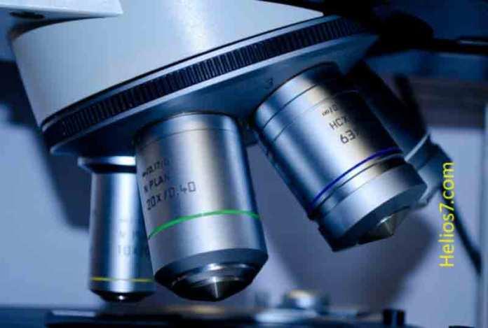 biotechnology future