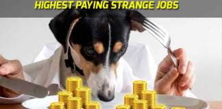 strange highest paying jobs