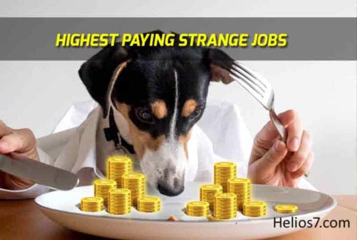 strange highest paying jobs