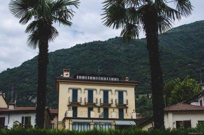 Palms on the promenade
