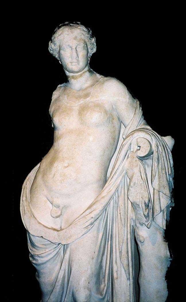 Hermaphroditus Istanbul