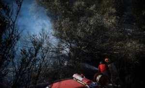Σωματείο Εθελοντών Δασοπυροσβεστών Μαραθώνα επενέβη σε 4 συμβάντα