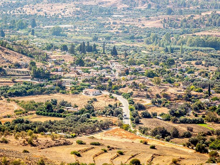 local community solea